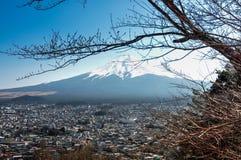 вашингтон взгляда mt Фудзи-городской пейзаж Стоковое Изображение RF