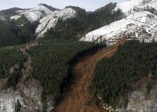вашингтон грязевых оползней пущи Стоковое Фото