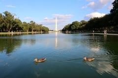 Вашингтон, округ Колумбия стоковая фотография rf