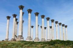 вашингтон соотечественника dc колонок капитолия arboretum Стоковое Изображение RF