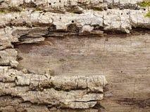 вал близкой съемки расшивы вверх Стоковое Фото
