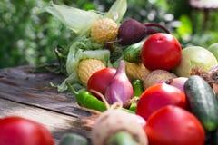 вал времени земной хлебоуборки сада яблока возмужалый Корзина овощей на деревянном столе Стоковые Изображения RF