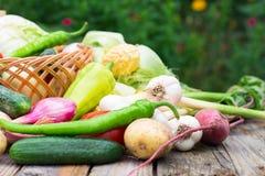 вал времени земной хлебоуборки сада яблока возмужалый Корзина овощей на деревянном столе Стоковое Изображение RF
