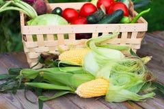 вал времени земной хлебоуборки сада яблока возмужалый Корзина овощей на деревянном столе Стоковое Изображение