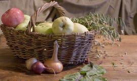 вал времени земной хлебоуборки сада яблока возмужалый Стоковые Изображения