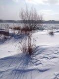 Вал в зиме Стоковые Изображения RF