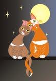 Валентайн влюбленности чертежа дня котов совершенное Стоковая Фотография RF