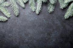 вал ели рождества предпосылки Стоковые Фотографии RF