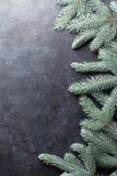 вал ели рождества предпосылки Стоковое Изображение RF