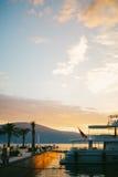 вал захода солнца силуэта ладони Стоковые Фото