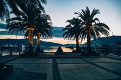 вал захода солнца силуэта ладони Стоковое Фото