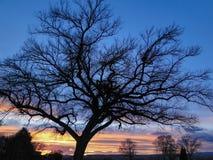вал захода солнца силуэта Стоковое фото RF