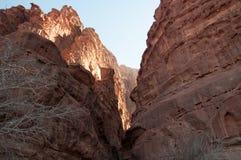 вади рома Иордана пустыни Стоковое Изображение RF