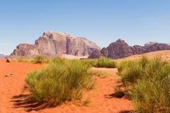 вади рома Иордана пустыни Стоковое Фото