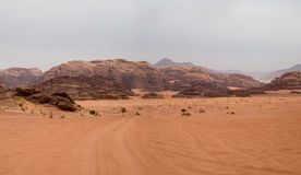 вади рома Иордана пустыни Стоковые Изображения RF