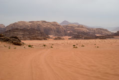 вади рома Иордана пустыни Стоковые Изображения