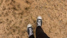 вал национального парка joshua Стоковые Изображения RF