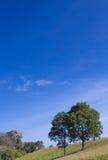 Вал на холме Стоковое Изображение RF