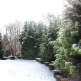 26 валов составного цифрового огромного размера съемки mpix панорамного снежных Стоковое Фото