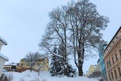 26 валов составного цифрового огромного размера съемки mpix панорамного снежных Стоковое Изображение RF