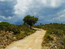 вал дороги сиротливой горы ландшафта Стоковые Фото