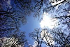 вал пейзажа сада осени Стоковая Фотография RF