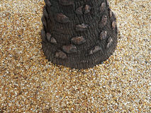 вал текстурированный расшивой Стоковое Изображение