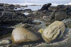 2 валуна в мелководье Стоковая Фотография RF