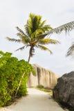Валуны и пальмы, Ла Digue, Сейшельские островы Стоковая Фотография RF