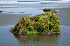 Валун пляжа, мини остров Стоковая Фотография RF