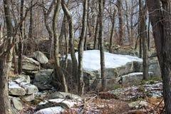 Валун Snowy Стоковые Изображения