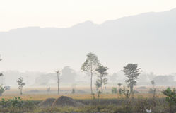 валы силуэта утра ландшафта дома тумана Стоковые Фотографии RF