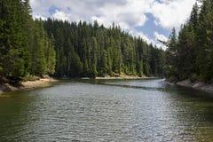 валы сосенки озера ветрено стоковое изображение