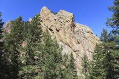 валы сосенки пика горы стоковое изображение rf