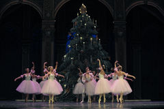 Вальс снежинок второе королевство конфеты поля поступка вторых - Щелкунчик балета Стоковая Фотография