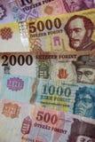 Валюта Венгрии Стоковые Изображения RF