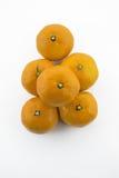 Вверх по взгляду на tangerines на белой предпосылке Стоковая Фотография RF