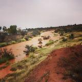 Вверх по The Creek стоковое изображение rf