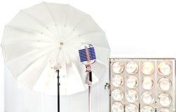 введенное в моду ретро микрофона Стоковое Изображение RF