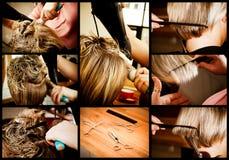 вводить в моду волос Стоковое Изображение RF