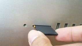 Вводить карточку SD Стоковое Изображение RF
