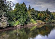 Вдоль банков реки Duwamish, Сиэтл, штат Вашингтон стоковые изображения rf