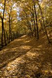 вдоль гулять реки путя minneapolis Миссиссипи стоковое изображение