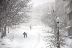 вдоль покрытой улицы снежка Стоковая Фотография