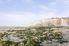 вдоль скалы мелка пляжа Стоковые Изображения