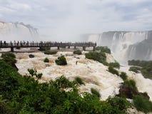 1 2 6 275 700 вдоль argentines америки Аргентины как оба бразильянина Бразилии консервируют каскадируя края скал правильно iguazu Стоковое Изображение RF