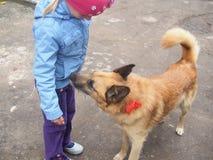 Вдохи собаки на ребенке Стоковые Фотографии RF