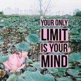 """Вдохновляющая мотивационная цитата """"ваш единственный предел ваш разум """"на пруде лилии воды стоковое изображение rf"""