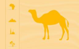 Вебсайт Африка Стоковое фото RF