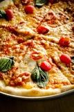Вегетарианская пицца Стоковая Фотография